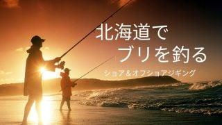 北海道でブリを釣る