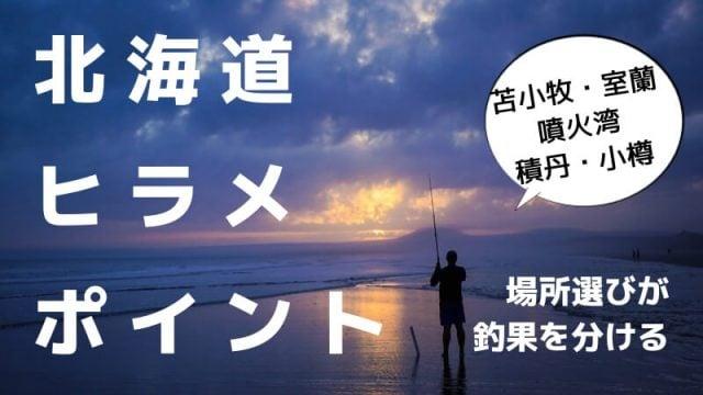 北海道ヒラメポイント