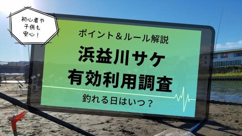 浜益川サケ有効利用調査釣り