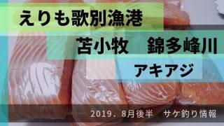 2019.8月歌別錦多峰アキアジ
