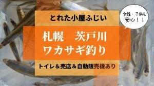 札幌茨戸川ワカサギ釣り